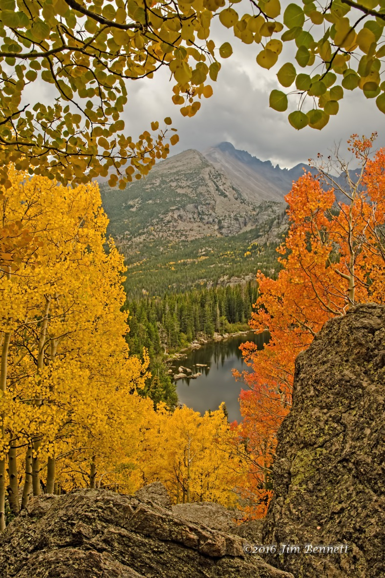 Aspen colors above Bear Lake in Rocky Mountain National Park, CO.