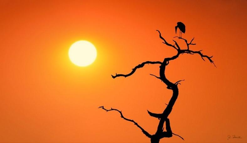 Impalila Island Sunset